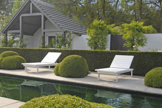 Moderne Garteninspiration mit Liegebereich – Garten mit Buchsbäumen  Rosen un...