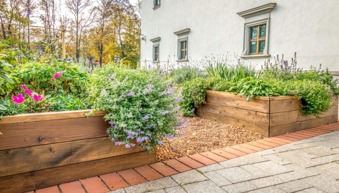 Modernen Vorgarten selber anlegen & pflegeleicht gestalten