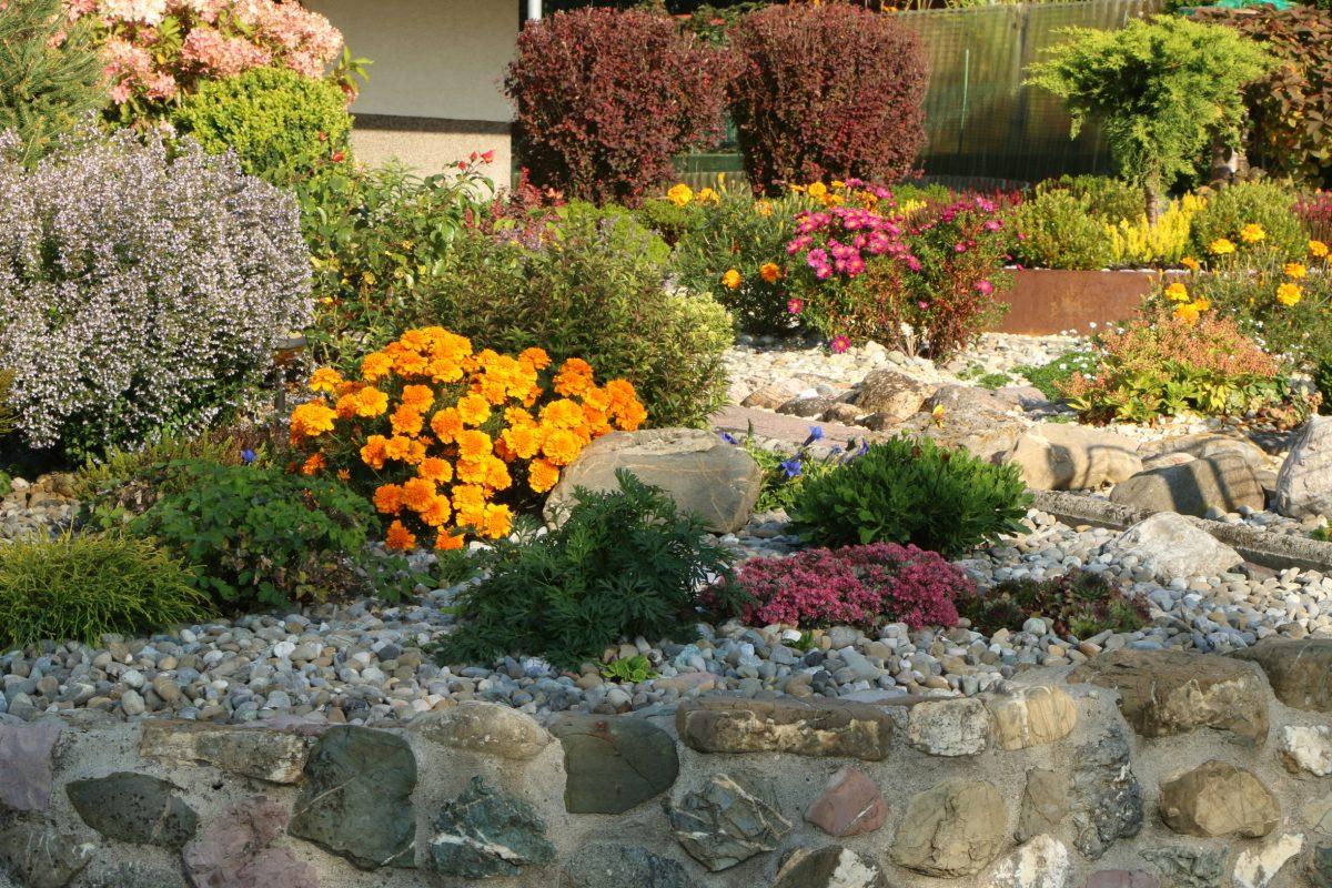 Kiesgärten sind in der modernen Gartengestaltung eine populäre Alternative für traditionelle Beete.