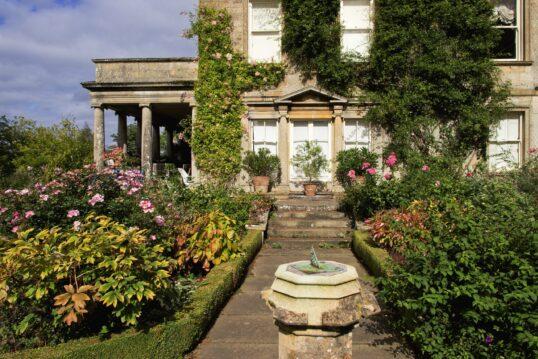 Wild bewachsenes Landhaus mit Rosen im Hof