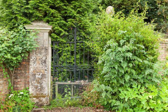 Verwildertes Gartentor aus Eisen mir altertümlicher Gartenmauer aus Ziegelstein
