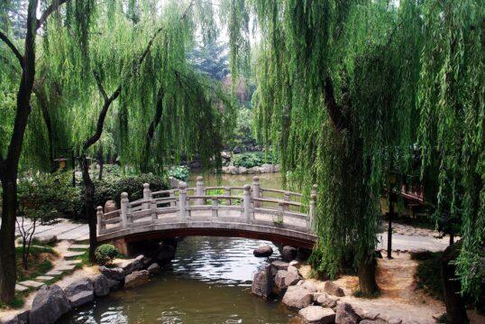 Japanischer Garten Idee – traditionell asiatische Steinbrücke über großem Gar...
