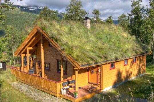Skandinavisches Holzhaus im natürlichen Stil mit grünem Dach