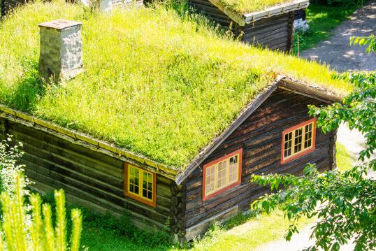 Gartenhaus im Wald mit bepflanzten Dach und natürlichen Garten