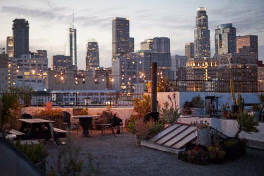 Idee für eine großzügige Dachterrasse mit gemütlicher Einrichtung  vielen Pflanzen ...