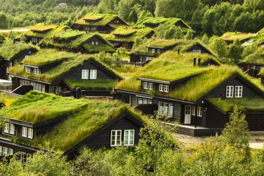 Dachbepflanzung Idee – Abgelegene Landhäuser im Grünen mit bepflanzten Dächer...