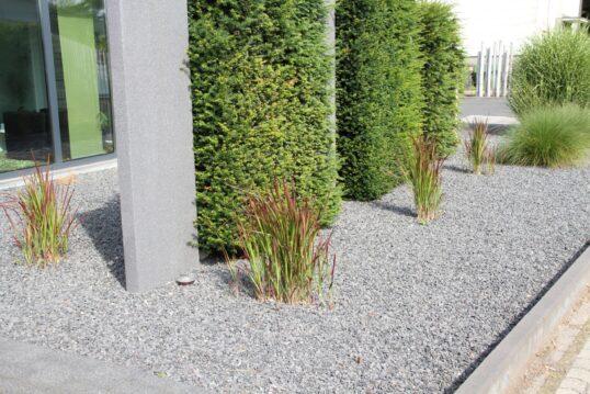 Idee für einen modernen Kiesgarten mit partieller Hecke als Sichtschutz & Ziergräser