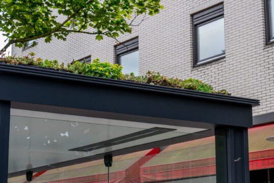 Idee für Dachbegrünung – Dach im modernen Stil mit verschiedenen Pflanzen beg...