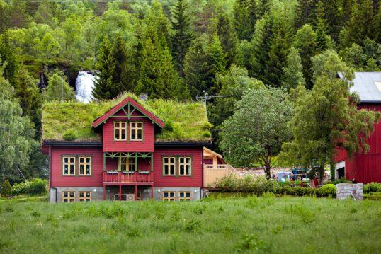 Landhaus Idee – Wunderschönes Landhaus im skandinavischen Stil mit bepflanzte...