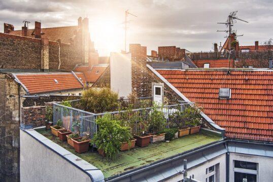 Kleine Dachterrasse als Garten mitten in der Stadt