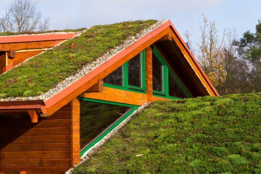 Dachbegrünung Idee – Beispiel mit Landhaus im skandinavischer Look mit grünem...