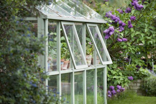 Gartenidee – Kleines Gewächshaus im Garten mit Flieder an der Seite – B...