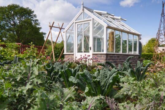 Gartengestaltung mit Gartenhaus – Garten mit Gemüsebeeten und einem Gewächsha...