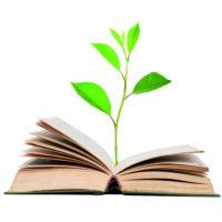 Gartenplaner Bücher