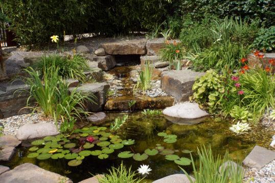 Gartenidee mit Wasser – Kleiner Gartenteich mit Wasserfall  natürlicher Stein...