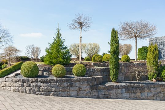 Stufenbeete mit Kies  bepflanzt mit Hecken  Nadel- und Laubbäumen