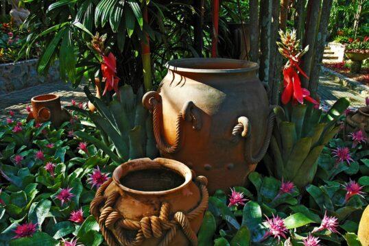 Gartendekoration & Gartenpflanzen Idee – Pflanzgefäße als Dekoration mit...