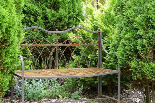 Vintage Gartenbank zwischen immergrünen Hecken