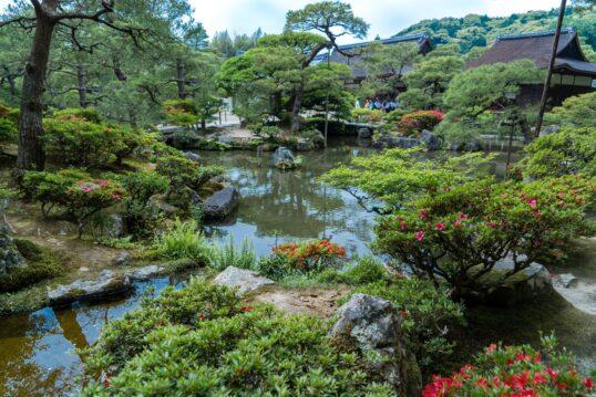 Asiatische Gartenidee – Japanischer Garten mit blühenden Laubbäumen und ander...