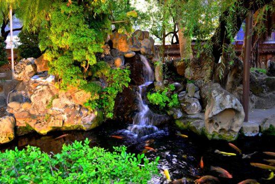 Wundervoller Gartenteich mit kleinem Wasserfall