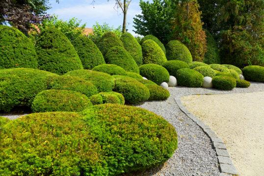 Gartengestaltung – Moderner Garten mit beschnittenen Hecken & Buchsbäume...