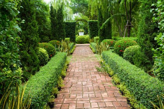 Gestaltungsidee für einen großen grünen Garten mit langem Gartenweg  Hecken  Laub- ...