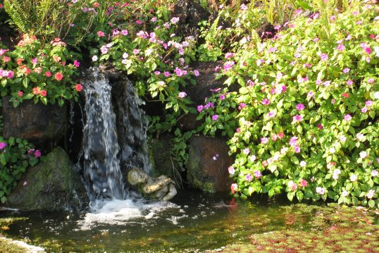 Wunderschöner Wasserfall in ästhethischem Blumengarten