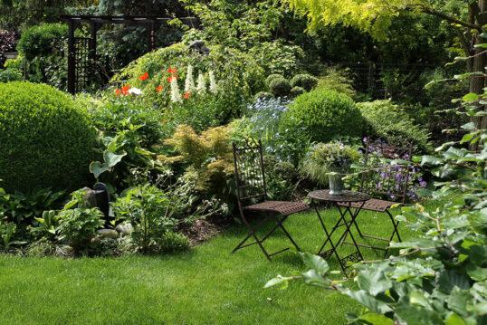 Idee für den Garten mit vielen Stauden und getrimmten Buchsbäumen – kleine Si...