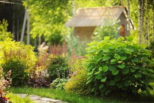 Gartenidee – Staudengarten mit kleinen und großen Staudenpflanzen an einem sc...