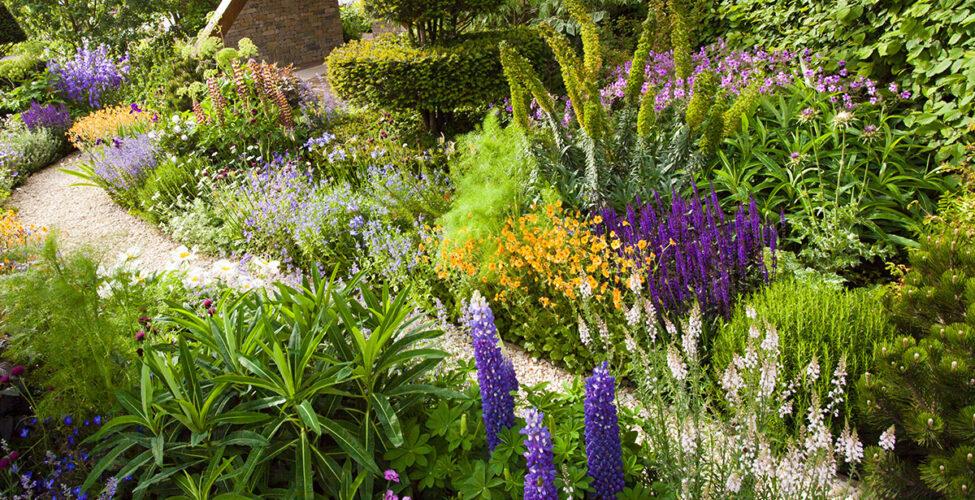 Wildgarten & Naturgarten