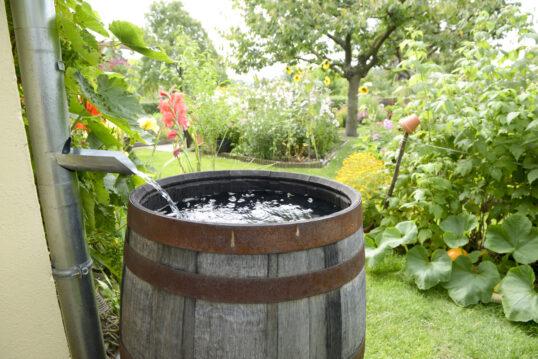 Gartengestaltung mit Regenfass aus Holz – Beispiel für einen Garten mit viele...