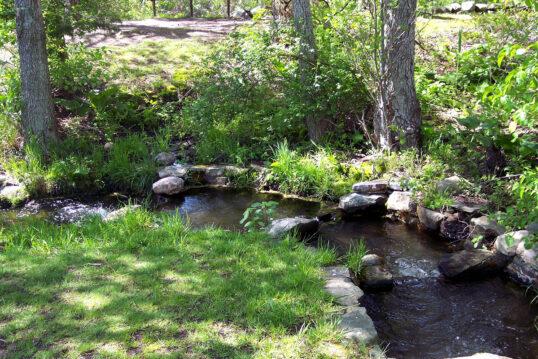 Gartengestaltung mit kleinem Bachlauf – Beispiel mit Steinbegrenzung & v...