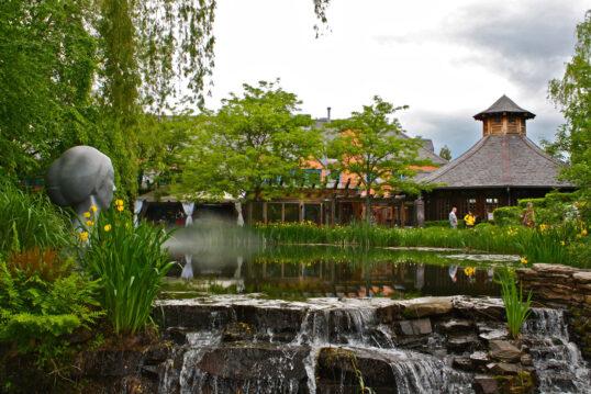 Parkgestaltung mit Teich & Wasserfall – Beispiel mit vielen Pflanzen ...
