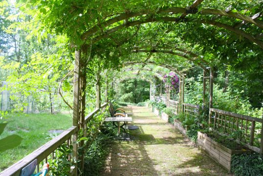 Idee für den Garten mit bepflanzter Holzpergola über eine Gartenweg – Beispie...