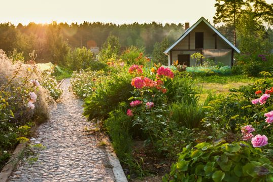 Ländlicher Wildgarten mit Gartenweg zum Haus als Inspiration – Beispiel mit R...