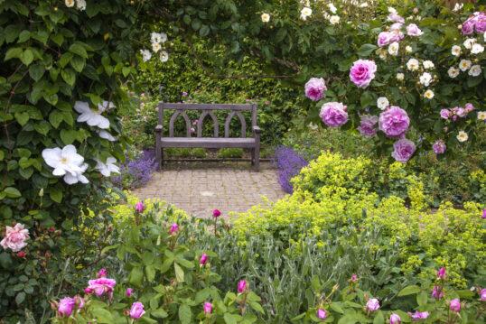 Idee für einen Wildgarten mit Sitzbereich – Gestaltungsbeispiel mit Holzbank ...