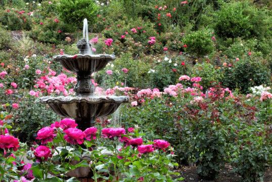 Gartenidee – Kleiner Springbrunnen im Wildgarten oder Naturgarten mit vielen ...