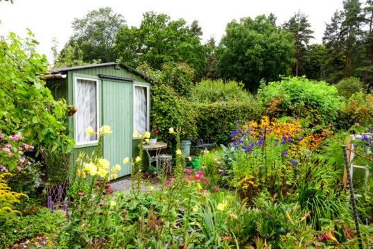 Wildgarten Idee mit grünen Gartenhaus aus Holz & Sitzbereich – Beispiel ...