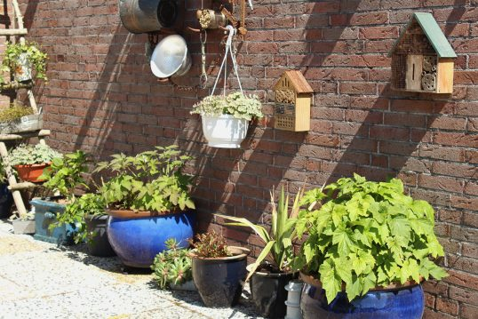 Idee für eine dekorierte Hauswand mit kleinen Insektenhotels & Blumenampel ...