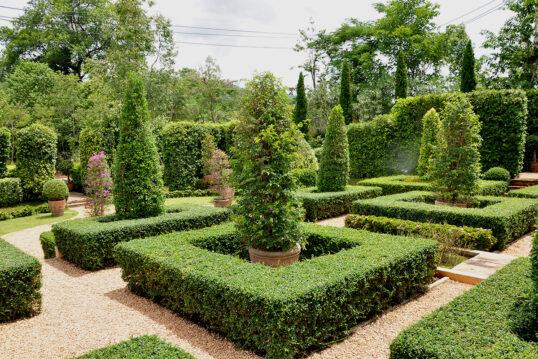 Gestaltungsidee für den Garten mit vielen Hecken aus Buchsbäumen – Bäume in P...