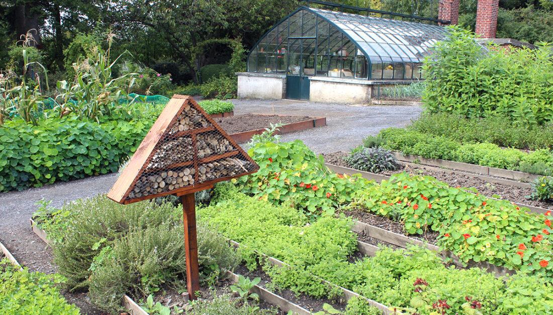 Insektenhotel Idee - Gemüsebeet & Gewächshaus