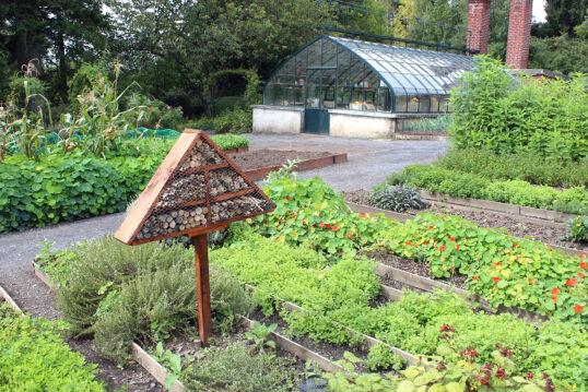 Gartenidee mit einem Insektenhotel auf dem Gemüsebett – Beispiel mit Gartenwe...