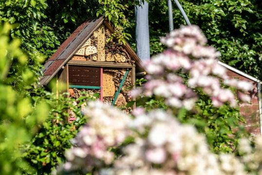 Gartenidee mit großen Insektenhotel zwischen Gartenpflanzen & Blumen – I...