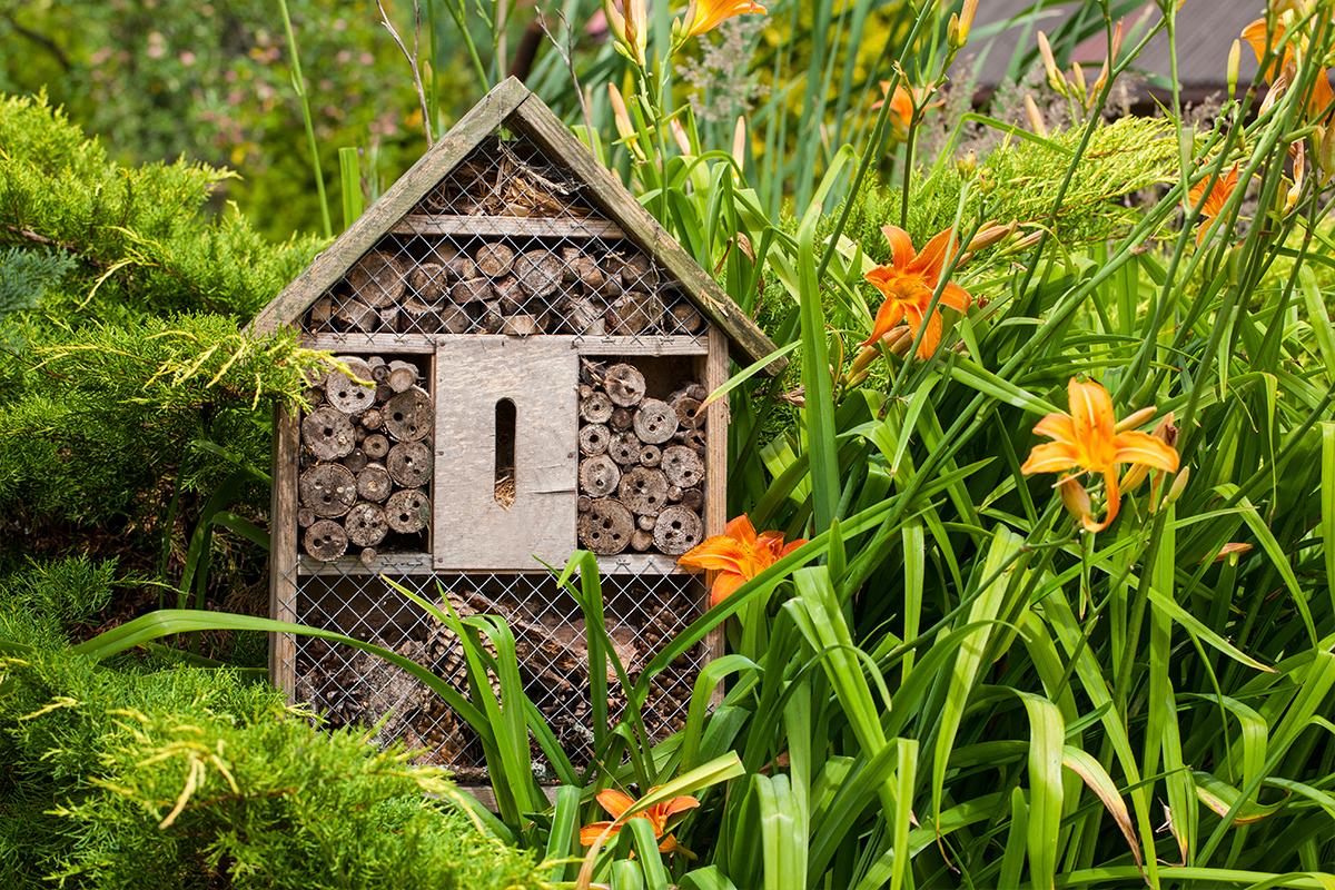Natürliche Gartengestaltung mit Insektenhotel