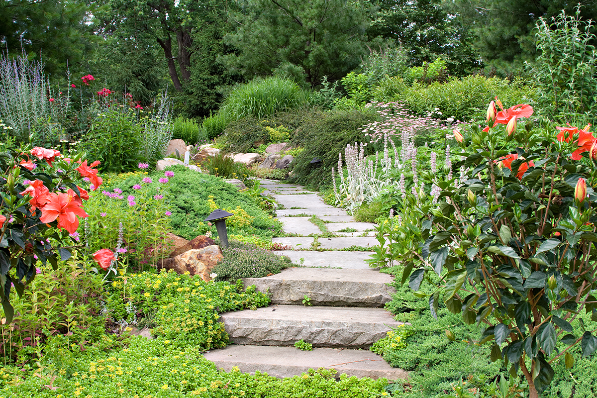 Gartengestaltung mit pflegeleichten Pflanzen & robusten Materialien