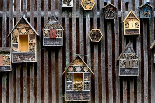 Gestaltungsidee für den Gartenzaun mit vielen Insektenhotels in groß & klein &...