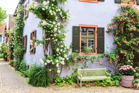 Hausfassade Hauswand Ideen Zum Erneuern Gestalten