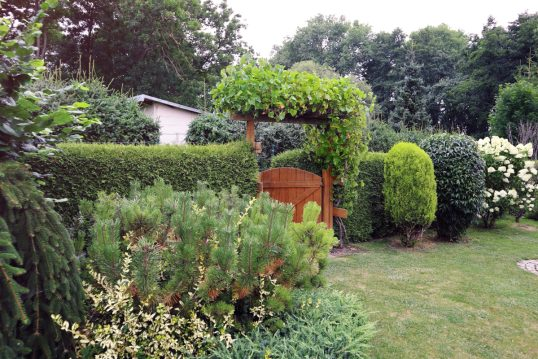 Gartenidee mit bepflanzten Torbogen an der Holzgartentür – Beispiel für einen...
