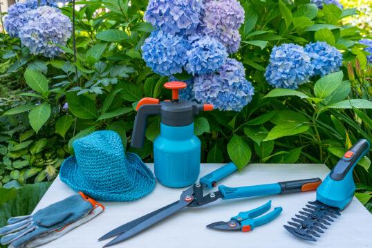 Gartenidee – Weißer Tisch mit Gartenwerkzeugen vor blühenden Hortensien ̵...
