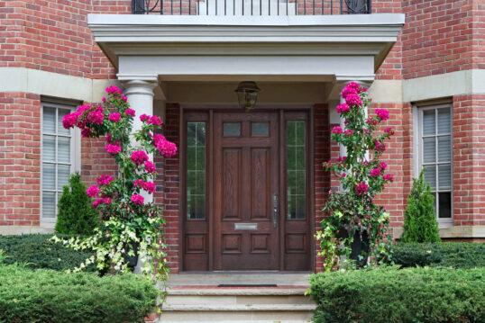 Hauseingang Idee – Haus mit elegantem Eingang mit Portico – Rhododendre...